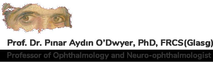 Prof. Dr. Pınar Aydın O'Dwyer
