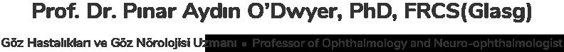 Dr Pinar Aydin ODwyer